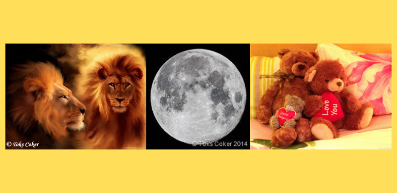 Full Moon in Leo & Happy Valentine 14/2/14