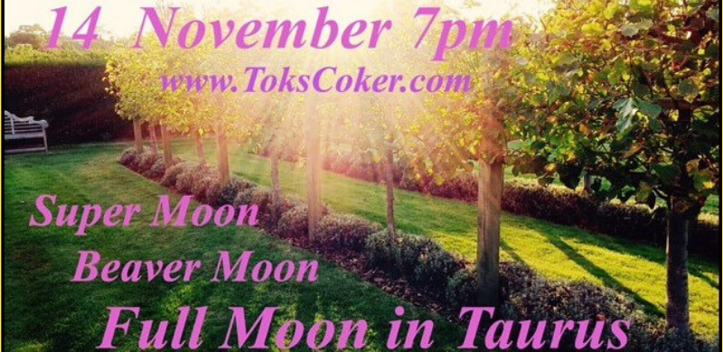 Full Moon in Taurus | Sun in Scorpio